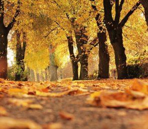Partire a Ottobre? I consigli di Ferdinando Masciotta